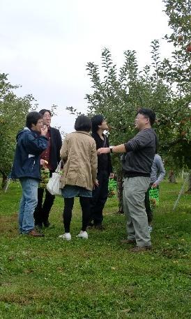 リンゴ狩り.JPG